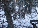 Le fameux croc qui nous sert d'ancre pour les arrêts. On l'ancre sur un tronc d'arbre quand la neige est trop profonde pour le retenir efficacement au sol.
