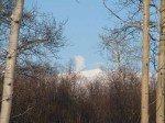 Mount Wrangell, notre volcan actif (inoffensif pour l'heure) fume cette semaine!