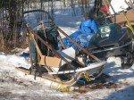 Gobi fait la sieste au soleil, à l'abri dans le sled, isolée du froid.