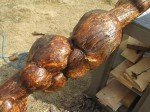 Zoom sur ce tronc étrange. Il est sculpté par des centaines de traces de vers de bois.