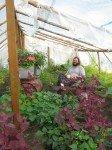 Matt le jardinier philosophe, médite chaque matin dans la serre, entouré de verdure.
