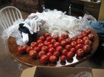 Karin nous a envoyé un carton de tomates par la Poste! Toutes emballées dans des chaussettes et de plastique. Pas une n'a éclaté!