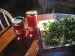 Confiture canneberge-rhubarbe, de l'or rose. Origan en train de sécher.