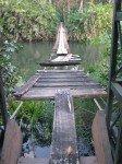 Pont de fortune pour aller à la plage, passant au dessus d'une lagune.