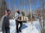 Nos deux colonies d'abeilles bientôt réunies en une seule ruche. Notre ami et voisin, Ralf, qui vient apprendre.