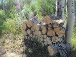 Belle pile de bois (du tremble) qui sèche.