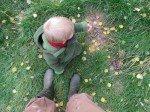 Un petit lutin joue avec les feuilles d'or sur  un tapis vert.
