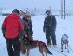 Nicolas Petit, musher d'origine française émigré en Alaska.