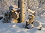 La hache ayant coupé le coup des dindes est restée au même endroit. Elle était recouverte sous la neige jusqu'à peu.