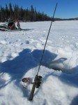 Peche a la truite en hiver; un trou dans la glace, on laisse tomber notre apat au fond du lac et on attend que ca morde.