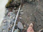 Avec l'érosion, il reste très peu de place pour marcher le long de la rivière.