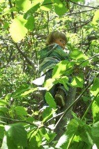 0046 Timothy climbing tree